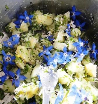 Krompir s cvetlicami